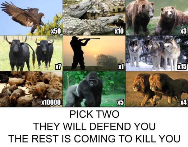 pick-two