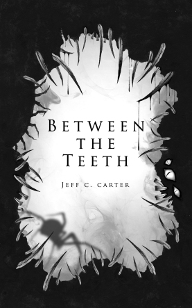 BetweentheTeethCover
